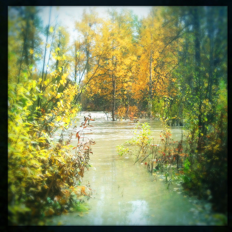 Talkeetna River flooding in September 2012