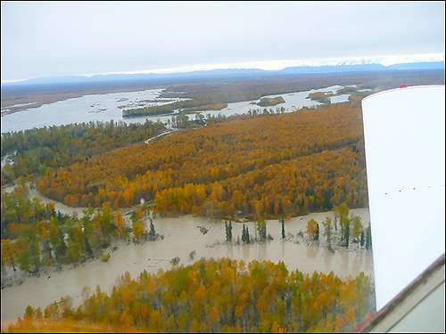 Aerial view of flooded rivers , Talkeetna Alaska, September 2012