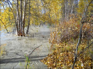Flooded Talkeetna River, September 2012